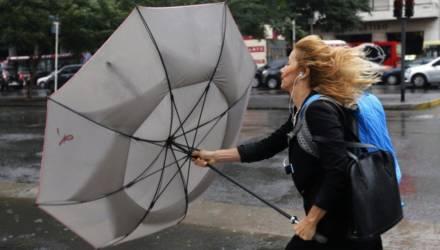 На завтра объявлено штормовое предупреждение: в Гомеле ожидается сильный ветер до 21 метра в секунду