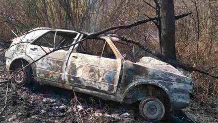 Два человека сгорели во врезавшемся в дерево автомобиле в Петриковском районе
