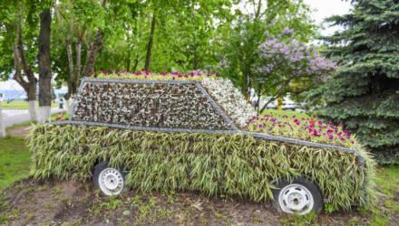 Клумба-автомобиль, цветочный велосипед: новые элементы благоустройства в Гомеле