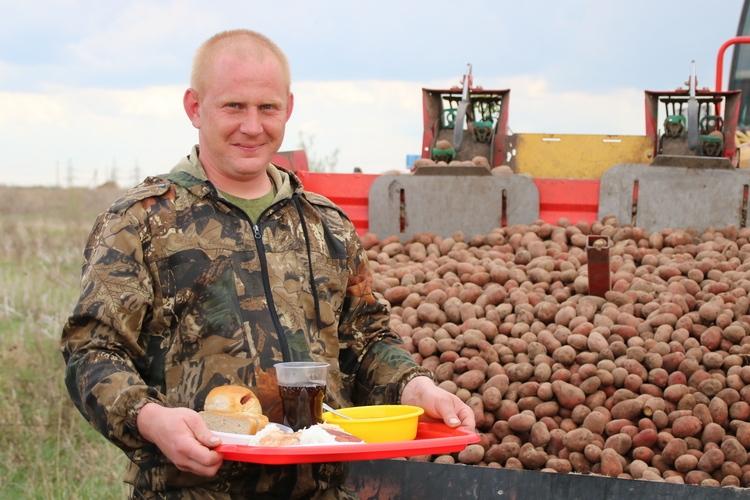 Комбинат «Восток»: гомельчан ожидает хороший урожай