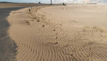 Пустыня наступает? Фотограф снял дюны и засыпанные песком поля на Гомельщине