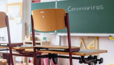 В рогачёвскую школу после того, как коронавирус выявили у педагога, на занятия пришло всего 14% учащихся