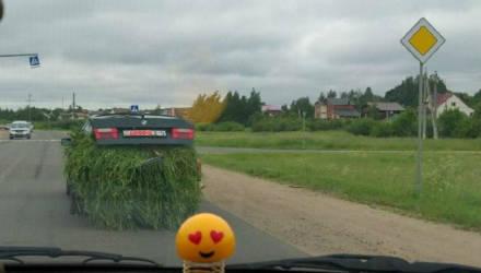 Если нет прицепа – загрузи траву в BMW