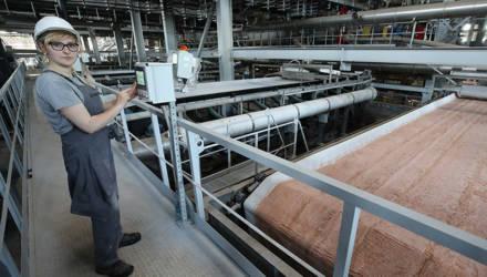 Выпуск калийного удобрения опробуют на обогатительной фабрике Петриковского рудоуправления