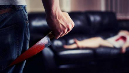 В Речицком районе мужчина приревновал и убил свою сожительницу: соперник сбежал, а ревнивец ещё долго кромсал труп женщины ножом