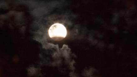 Сегодня вечером можно увидеть полутеневое затмение Луны