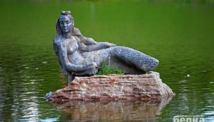 В Гомеле экологи рекомендуют не будоражить лишний раз парковый пруд и его обитателей