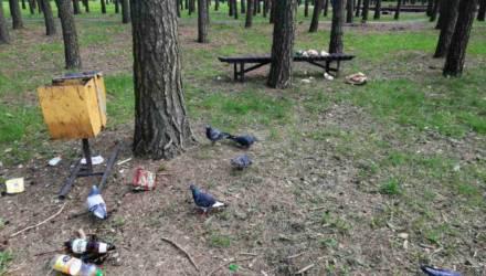 """""""Свинушник каждое утро"""". В гомельском парке в разбрасывании мусора заподозрили птиц, но правда печальнее"""