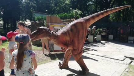 Динозавры ожили в Гомеле: уникальный парк на время поселился у аттракционов