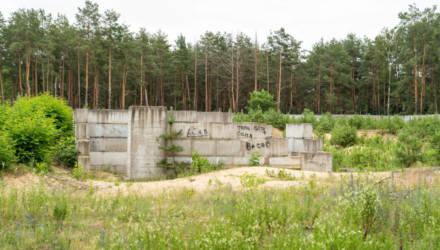 Какой Ледовый дворец предлагают построить в Светлогорске гомельские проектировщики