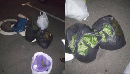В Чечерском районе задержано пятеро гомельчан с марихуаной