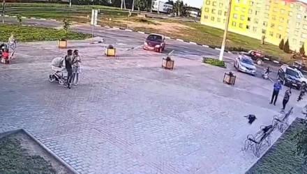 В Костюковичах ворона похитила 150 рублей из рюкзака 18-летнего парня. Ранее он их украл у женщины