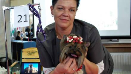 Светлогорский грумер — об увлекательной работе с четвероногими клиентами, и о модных прическах для собак и кошек