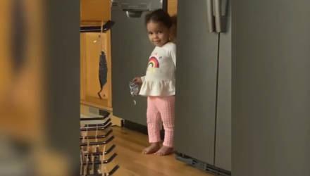 Двухлетняя внучка попалась на краже сладостей, и видео с её реакцией пригодится на все случаи жизни