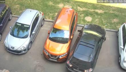 «Нас распирало от смеха при просмотре этого видео»: мужчина рассказал, как девушка притёрла его авто на парковке в Гомеле