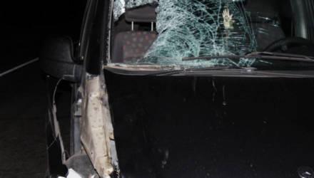 В Светлогорском районе пьяный пешеход ночью переходил перекрёсток, угодил под колёса, пробил головой лобовое и умер