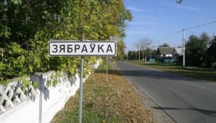 В деревне под Гомелем никто не боится коронавируса