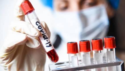 В Гомеле все желающие могут сдать экспресс-тест на COVID-19. Узнали где и почём