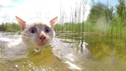 Плавитесь от жары? Рассказываем, где в Гомеле сейчас можно купаться легально и безопасно