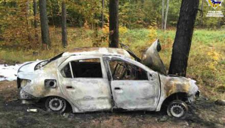 В Гомельском районе молодого водителя осудили за пьяное вождение и ДТП, в котором пострадал подросток