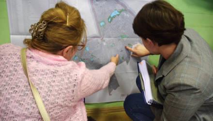 В Гомеле обсудили доклад по стратегической экологической оценке схемы озеленения