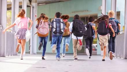 Минобразования определило график школьных каникул в новом учебном году