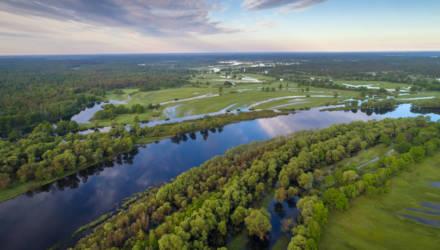 Экологи пытаются спасти Полесье и Припять от водного пути Е40 и зовут всех в путешествие по реке
