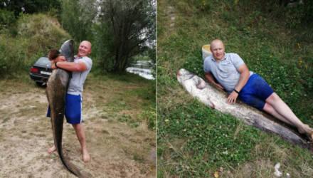 Это рекорд! Гомельчанин в Лоевском районе выловил гигантского сома