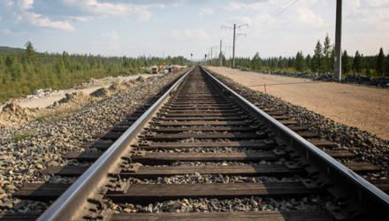 Протечку дизельного топлива обнаружили работники станции Жлобин