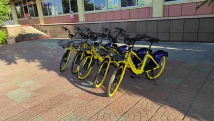 Идите на жёлтое: на улицах Гомеля появились прокатные велосипеды. Как пользоваться и сколько стоит