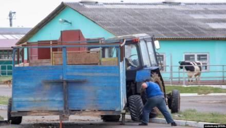 На Гомельщине задержали тракториста Василькова, который вёл YouTube-канал «Хойники для жизни»