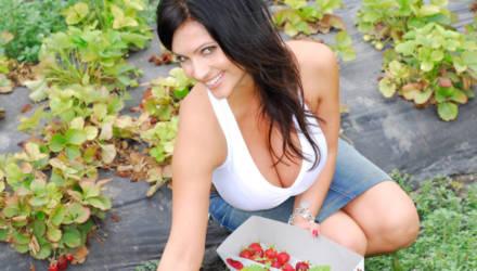 5 важных работ с клубникой в августе, чтобы наслаждаться урожаем следующей весной