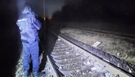 Гомельский пассажирский поезд столкнулся с бетонным столбом