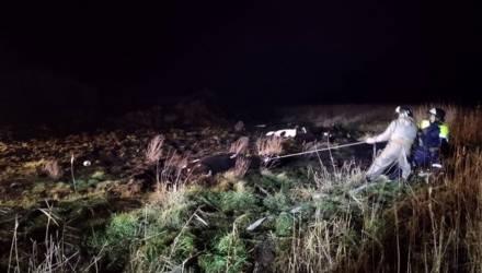 В Хойникском районе в яму провалились сразу 6 коров