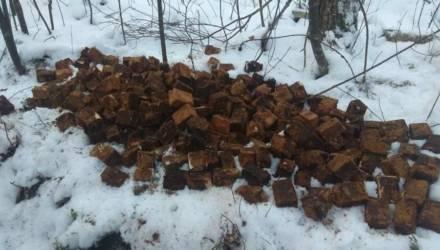 Гомельские пограничники нашли 110 кг взрывчатки и боеприпасов времён ВОВ