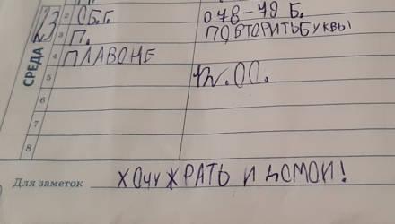 """Школьник насмешил Twitter своим дневником, где графа """"Для заметок"""" стала его исповедью"""