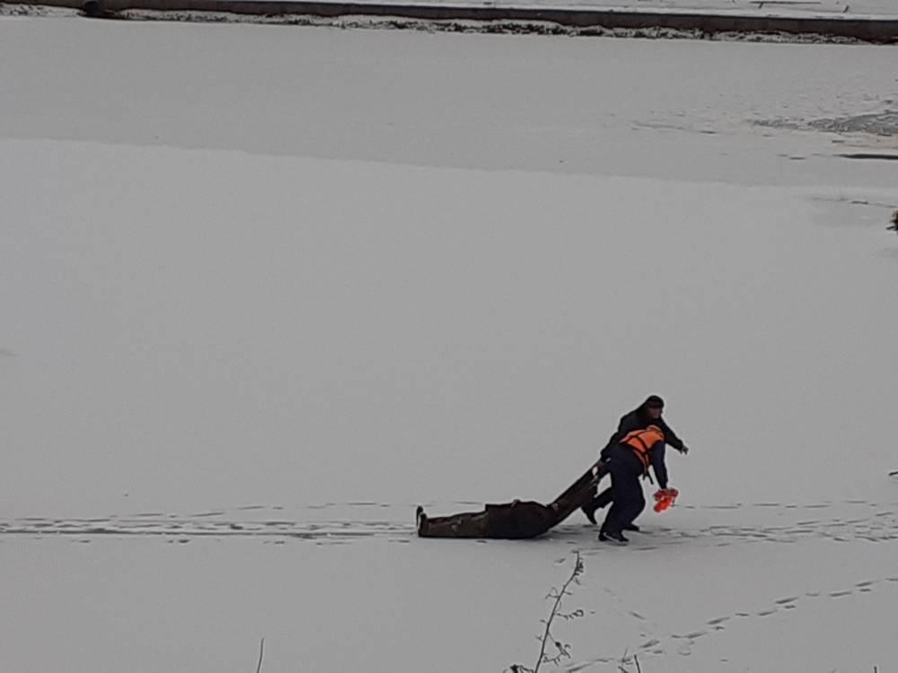 В Добруше у рыбака случился сердечный приступ: спасатели ОСВОДа пришли на помощь