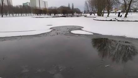 В Гомеле молодой человек вытащил из ледяной воды лабрадора