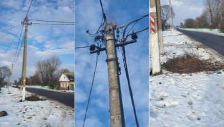 Речичане возмущены: энергетики сбросили гнездо аистов с опоры ЛЭП и просто уехали