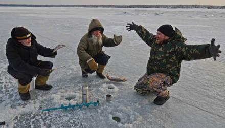 Рыбакам напоминают о запретах и предупреждают о крупных штрафах