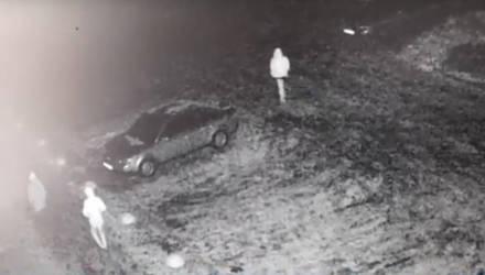 На Гомельщине задержали компанию из пяти человек, которые пытались похитить семь автомобилей