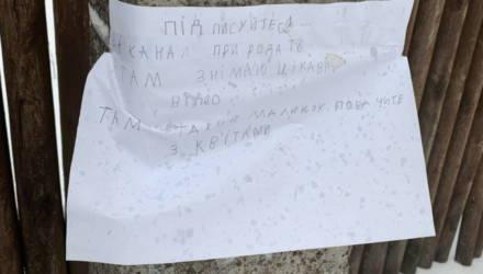 На девочку из украинского села на ютубе подписались 30 тысяч человек — она повесила на столбе рекламу канала о животных
