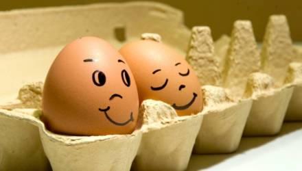Гомельская птицефабрика заняла второе место в стране по производству яиц