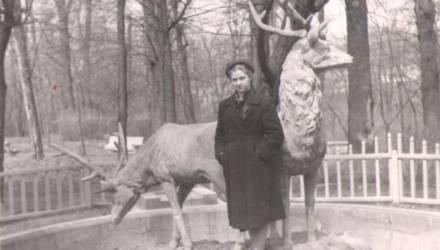 Гомельский флот и олени, которых уже нет в парке. Фото старого Гомеля из семейного альбома