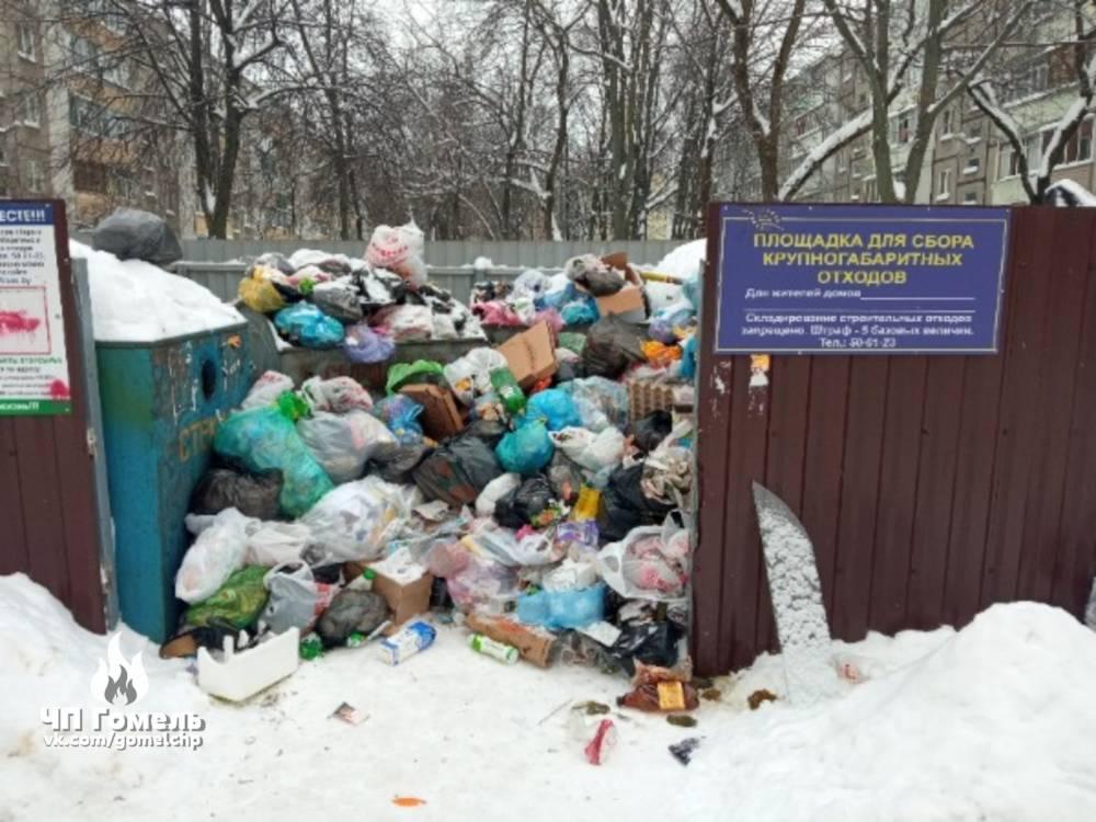 Гомельчане столкнулись с проблемой: мусор не вывозят по нескольку дней