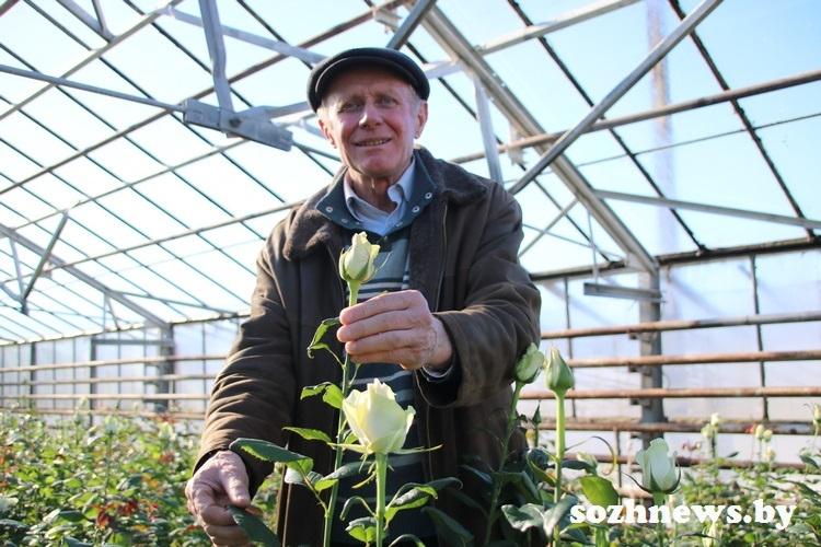 Миллион роз для любимых: чем живёт крестьянско-фермерское хозяйство «Цветоводство» под Гомелем