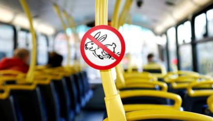 Гомельчанин сел в автобус и махнул перед лицом кондуктора бумажкой, мол, инвалид. Женщина попросила ещё раз и помедленнее