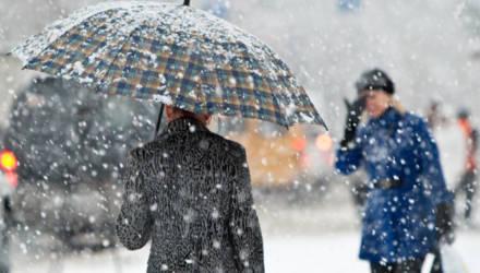 «Снегодождь. Опять снегодождь»: погода в Гомеле на неделю