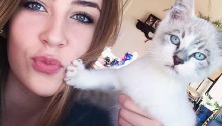 Скажем нет обнимашкам: 15 котов, которые всем своим видом показывают, что их лучше не трогать