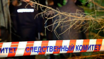 В лесу найдено тело офицера Гомельского гарнизона. Минобороны и СК выясняют, что произошло
